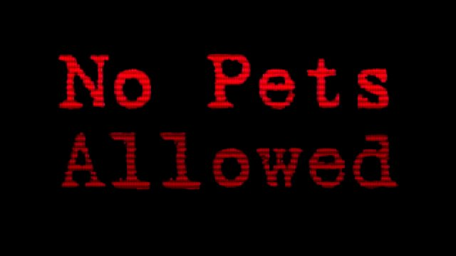 No Pets Allowed 017